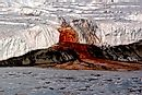 What Is So Unique About Blood Falls In Antarctica?