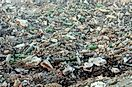 Largest Landfills, Waste Sites, And Trash Dumps In The World