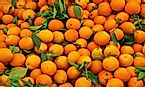 Top Orange Producing Countries In The World