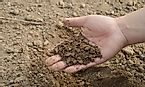 USDA Soil Taxonomy: Soil Orders And Their Major Characteristics