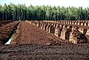 The World's Largest Exporters of Peat