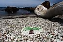 Glass Beach, California - Unique Places around the World