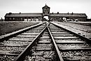 The Horrors of Auschwitz Concentration Camp