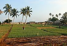 What Are The Major Natural Resources Of Benin?