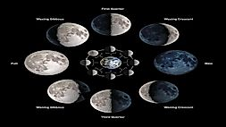 What Are The Different Phases Of The Moon?