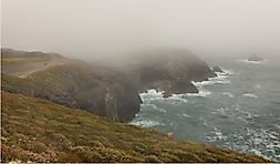 How Does Coastal Fog Form?