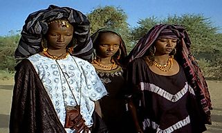 Largest Ethnic Groups in Niger