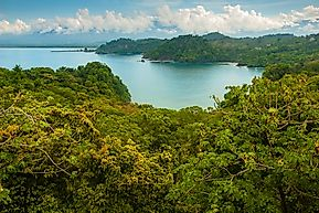 Parque Nacional Manuel Antonio, Costa Rica - Unique Places Around the World