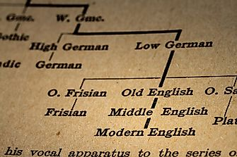 Which Languages Are Parts Of The Indo European Language Family?