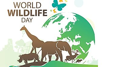 What And When Is World Wildlife Day?