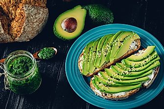 The Growing Appetite For Avocados In America
