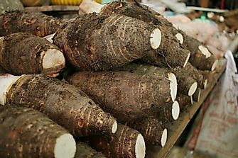Top Taro Producing Countries In The World