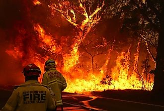 What Are Australian Bushfires?