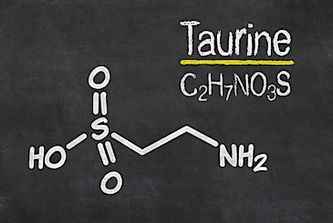 Where Does Taurine Come From?