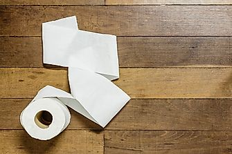 How Many Trees Does It Take To Make 1 Roll Of Toilet Paper?
