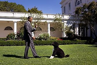 10 Healthiest Presidents In American History