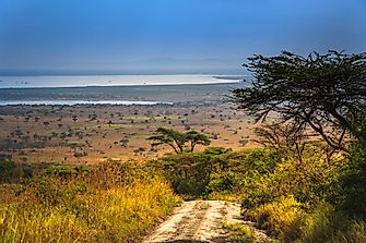 The Western Or Albertine Rift Valley Lakes