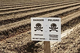 What Are The Effects Of Pesticide Poisoning?