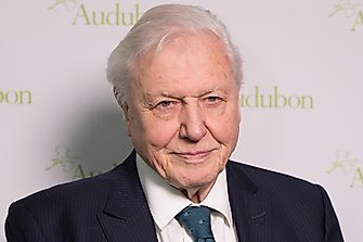 A Brief Biography Of Sir David Attenborough