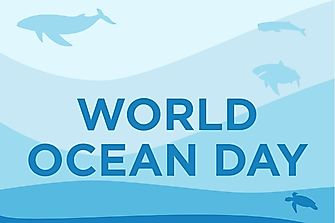 When And Why Is World Oceans Day Celebrated?