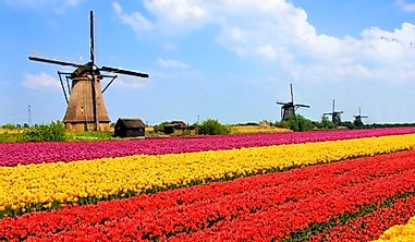 Which Are The Biggest Industries In The Netherlands?