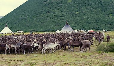 Countries Where Nomadic Pastoralism Is Still A Way Of Life