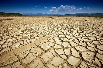 What Are The Effects Of A Drought On The Environment?