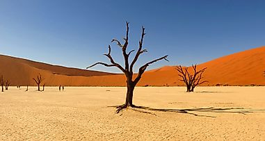 Where Does The Kalahari Desert Lie?