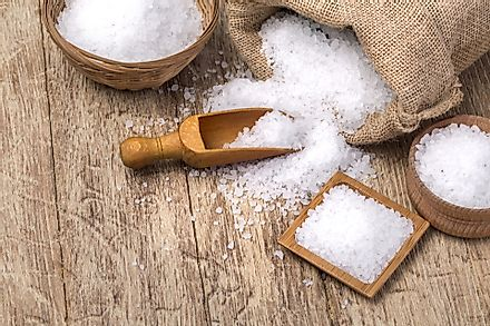 Salt is vital in the daily life of plants and animals.