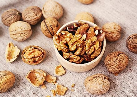 Walnuts are the edible seeds of the walnut tree.