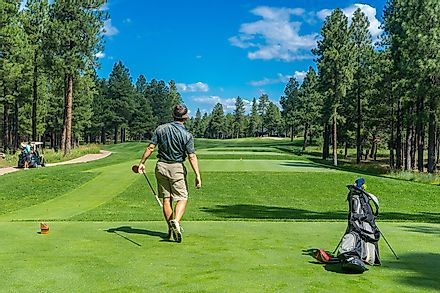 Golf is a club-and-ball sport. Image credit: Bedrck from Pixabay