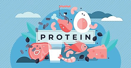 Solar Foods, a company from Finland, plans to bring a new type of protein powder to the market.