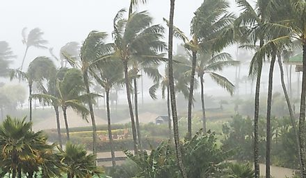 Hawaii sees the most annual rainfall of the US states.