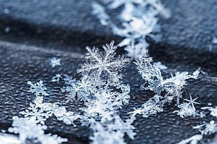 Snowflakes fall in all kinds of shapes and sizes.