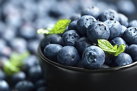 American blueberries are shipped all over the globe, with different varieties of the berry sourced from the different climates of a variety of US states.