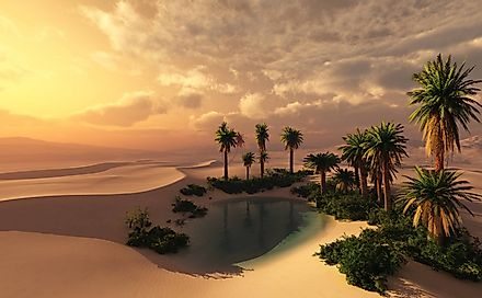 An oasis sustains life in an otherwise harsh and unforgiving desert environment.