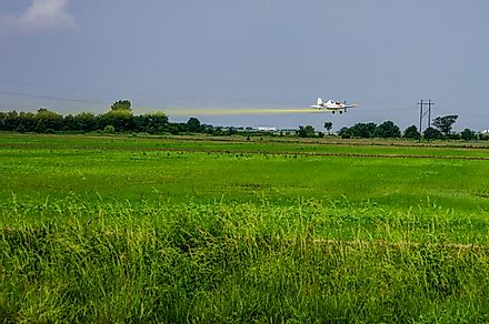 A crop duster flies over a rice field in Arkansas. Editorial credit: Philip Rozenski / Shutterstock.com