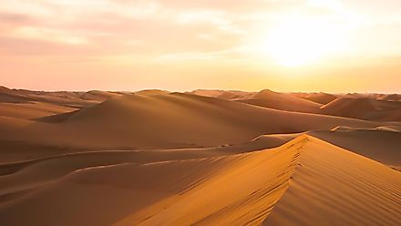 The Arabian Desert is, as all deserts are, a place where the living conditions are very challenging.