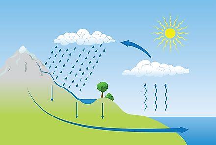 A diagram showing the water cycle.