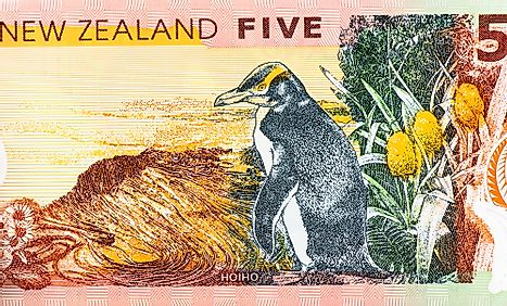 New Zealand 5 dollars 2014 Banknotes