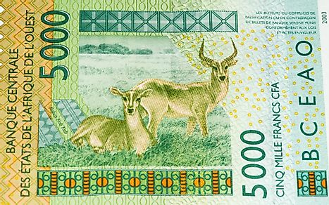 5000 CFA franc bank note.