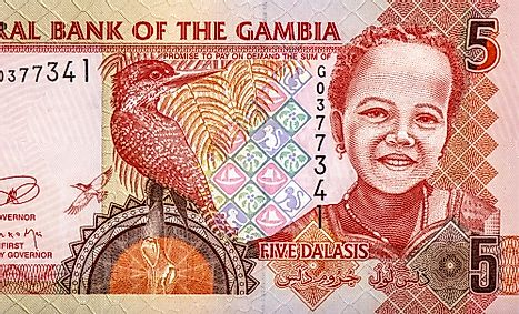 Portrait from Gambia 5 dalasis 2006 Banknotes.