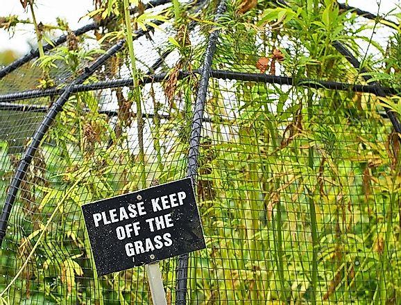 The Alnwick Poison Garden Of Northumberland England Worldatlas Com