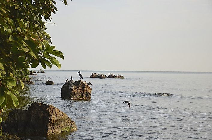 How Big Is Lake Victoria?