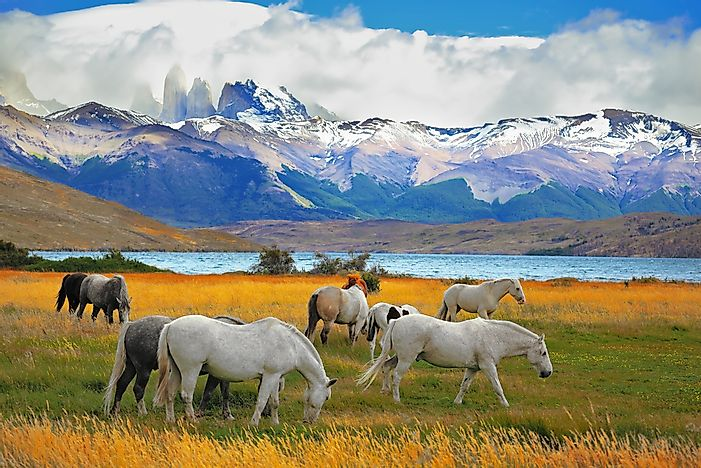 #6 Torres del Paine National Park, Chile/Argentina