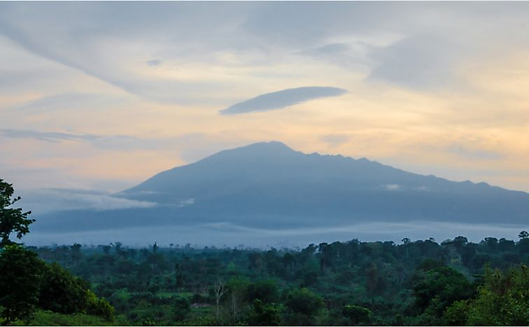 View of Mount Cameroon mountain with green forest during sunset.