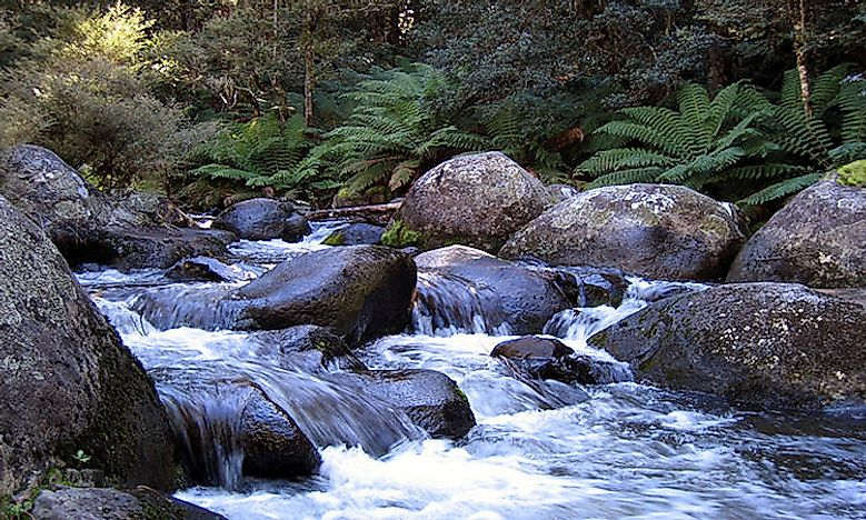National Parks In New South Wales, Australia: Role In Biodiversity Conservation