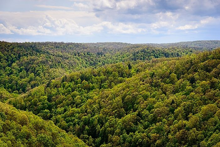 The Cumberland Plateau - Unique Places In The U.S.A.