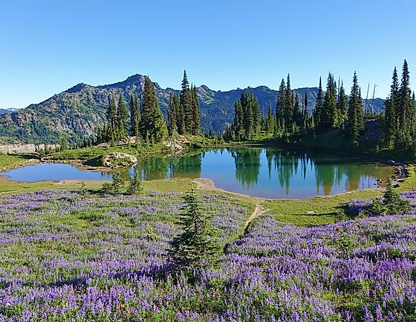 #3 Pacific Crest National Scenic Trail