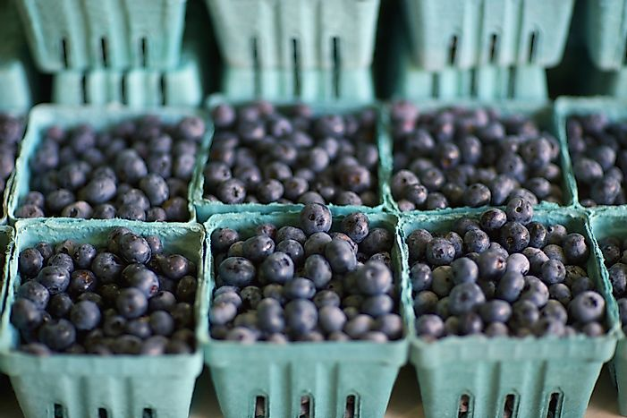 #2 Georgia - 92 Million Pounds of Blueberries Produced